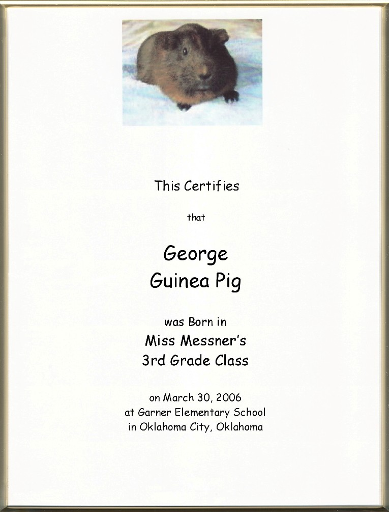 Keepsake Pet Birth 8.5 x 11 inch Certificate - Your Pet Picture ...